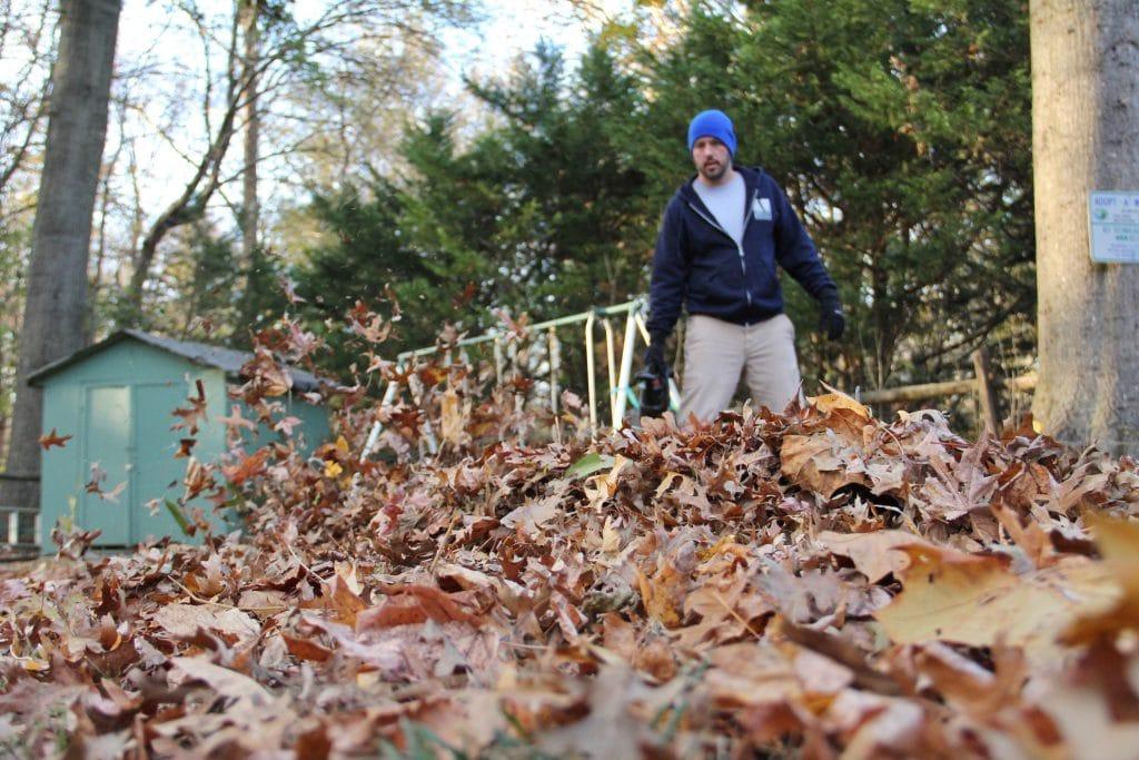 Chasser les feuilles mortes