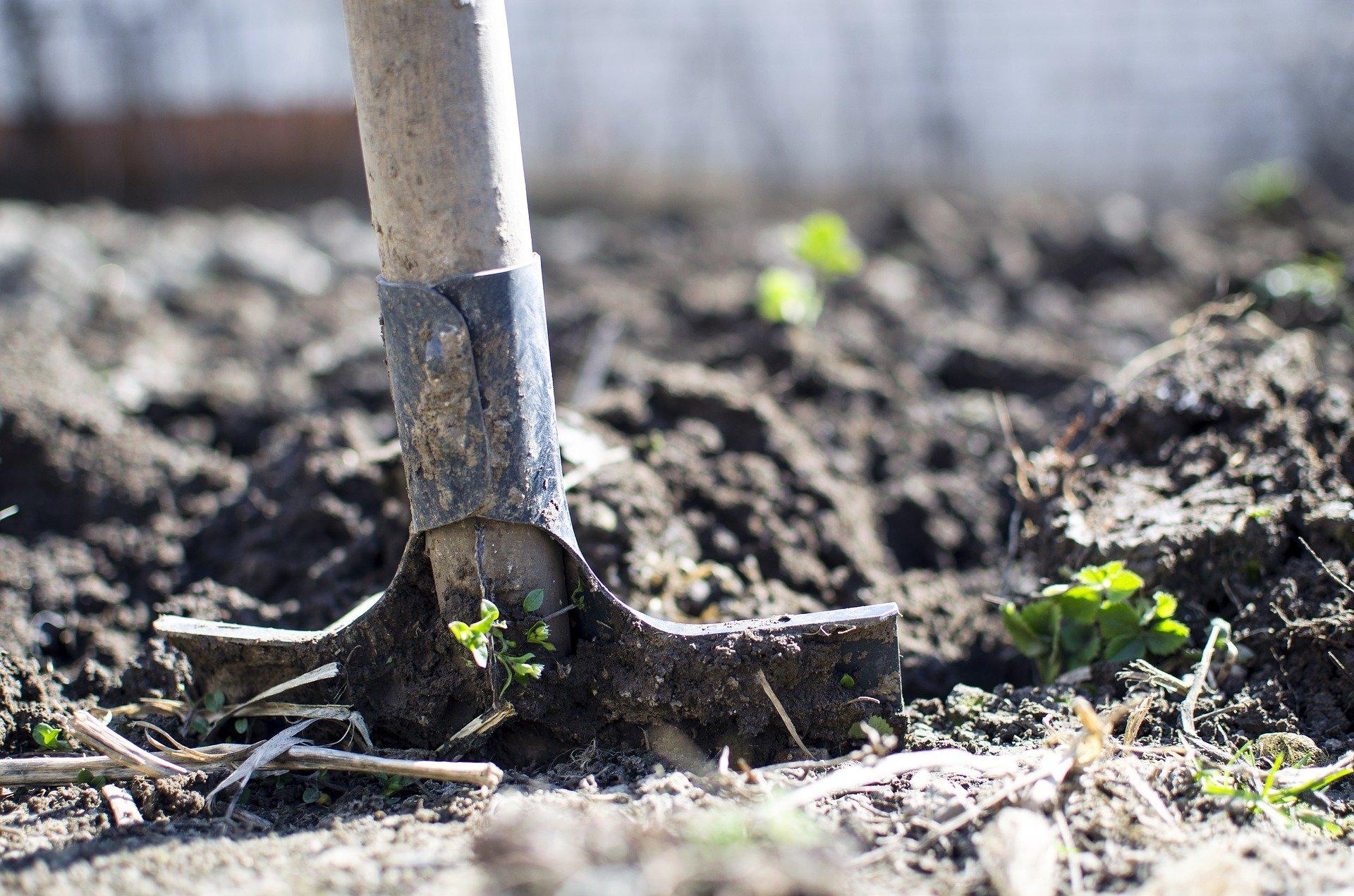 2. Nettoyer et enrichir la terre